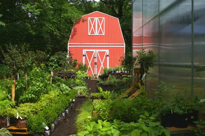 An old barn looks over the outdoor garden center. - CHERYL BAEHR