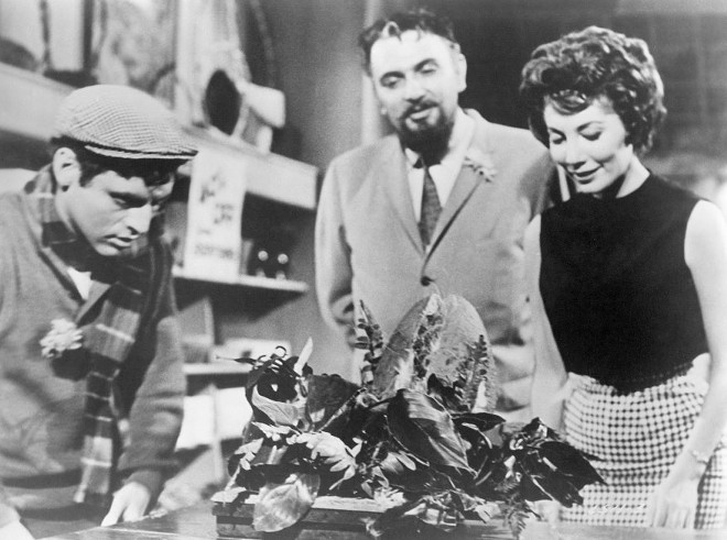 The original Little Shop of Horrors has no singing and few laughs, but an exceedingly grisly end. - (C) 1960 THE FILMGROUP