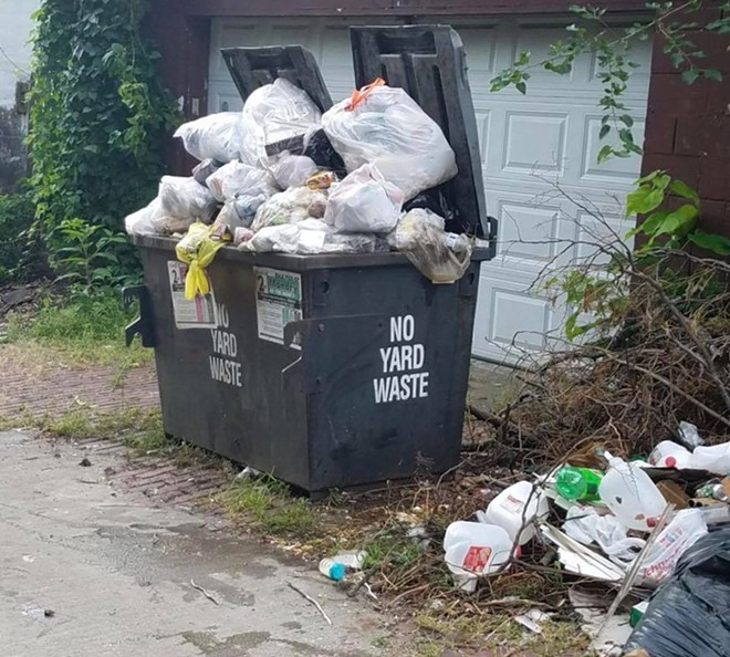 An actual photo of a St. Louis alley, taken by 20th Ward Alderwoman Cara Spencer. - CARA SPENCER
