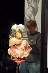 The Naked And The Dead Body Worlds Meets Life Class Arts Blog