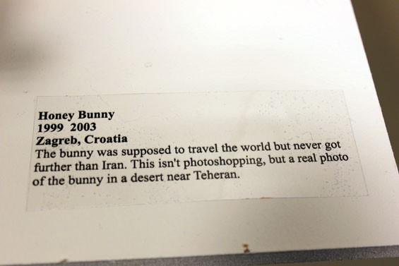 bunny_text.jpg