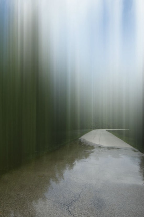 Continuing Onward, Hazlet State Park in Southern Illinois. - ELLEN JANTZEN