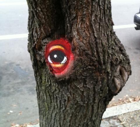 peat_tree_1.jpg