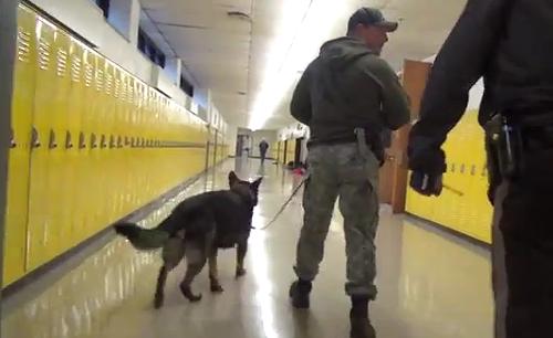 St. Louis County Police search Oakville High School on a random drug sweep. - YOUTUBE