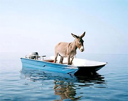Symbolism Alert: it's a Democrat on a boat. - IMAGE VIA