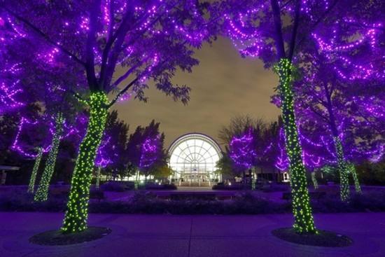 The Garden Glow at the Missouri Botanical Garden. - CREDIT MARY LOU OLSON
