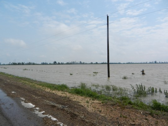 Flooded farmland near New Madrid, Missouri, taken last weekend after the U.S. Army Corps of Engineers detonated the Birds Point Levee. - SARAH FENSKE