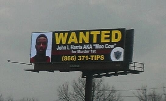 Wanted_Moo_Cow_Large_sign.jpg