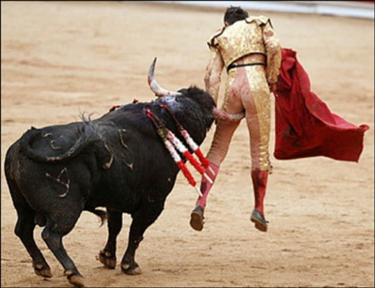 One good way to prevent sports injuries: Opt for table tennis instead of bullfighting. - IMAGE