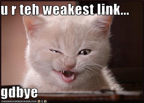 funny_pictures_kitten_calls_you_weakest_link.jpg