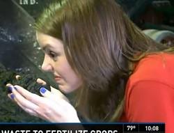Elizabeth Matthews: KSDK's muck-smelling reporter. - KSDK