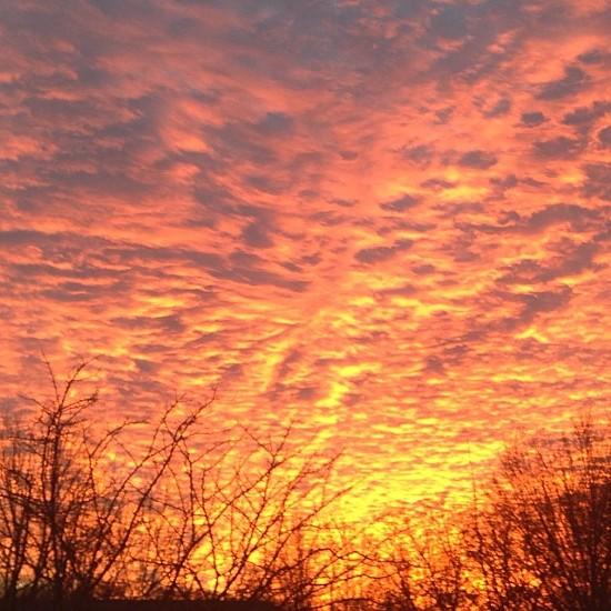 Sunday night's sunset over a surprisingly warm St. Louis. - DANA WORKES