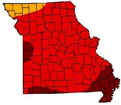 The Bootheel is first in drought damage, and first in corn harvest.