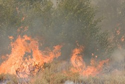 Forest fire in Castle Rock Park, Ketchum, Idaho, 2007.