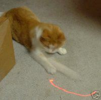Laser pointers: Not just for freaking out your cats.