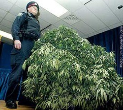 A cop with a huge bush - IMAGE VIA