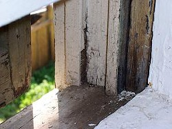 Lead paint for residential use was banned in 1978.