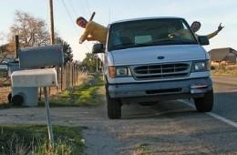 Mailbox baseball! Batter up! - IMAGE VIA