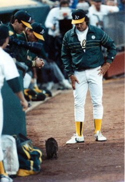 As much as Cardinals fans may want to, La Russa is a proponent of no-kill shelters for relief pitchers. Here, the now-gruff manager rescues a kee-kee during an A's game in 1990.