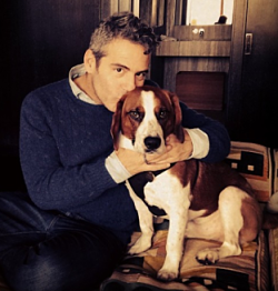 It's puppy love for Andy Cohen and Wacha. - BRAVOANDY   INSTAGRAM