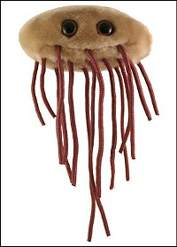 E. coli: Shit looks frightening even when it's a stuffed toy.