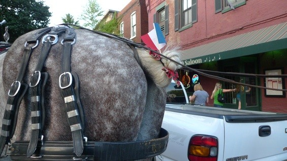 This horse's ass belong's to France