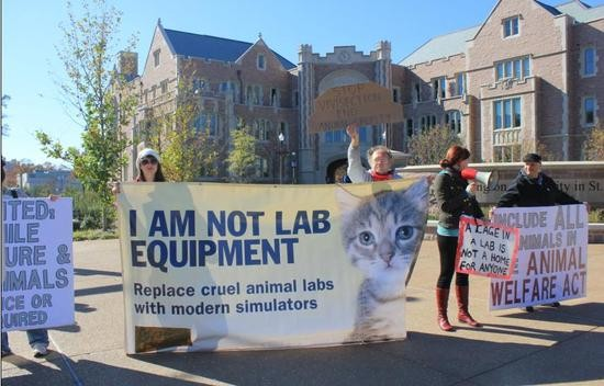 Protest at Wash. U. last year. - PHOTO BY LEAH GREENBAUM FOR RFT