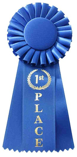 first_place_ribbon.jpg