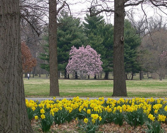 Tower Grove Park. - NATIONAL REGISTER OF HISTORIC PLACES