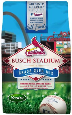 Coming soon! Busch Stadium grass seed.
