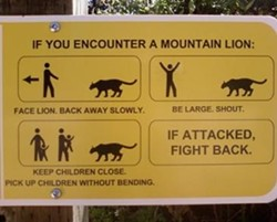 You, too, can survive a mountain lion encounter. - FUNNYAUSSIESIGNS.COM