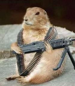 Happy_Groundhog_Day_thumb_250x284.jpg