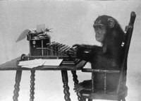 monkey_typing_thumb_200x143.jpg