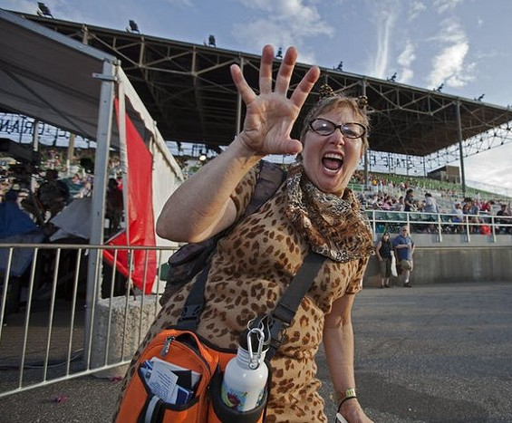 Meow! St. Louis gets its own Internet Cat Video Festival this summer. - WALKER ART CENTER