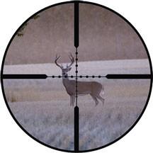 Deer season will be allright - IMAGE VIA