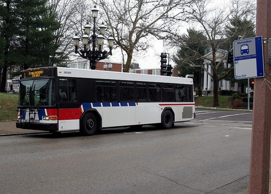 Buses are for riding, kids, not shooting. - DAVID WILSON ON FLICKR