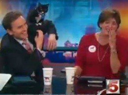 KSDK anchor Jennifer Blome loses her sh*t as co-anchor gets excreted on