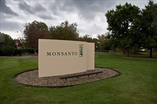 Monsanto, headquartered in Creve Coeur. - VIA