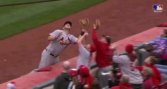Matt Adams goes for a foul ball, but a Reds fan gets there first. - YOUTUBE