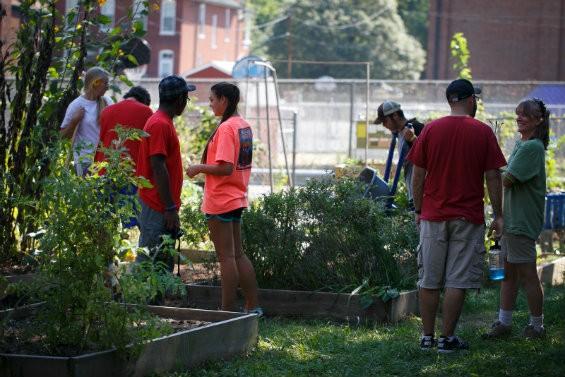 Volunteers working in raised beds. - COURTESY GATEWAY GREENING