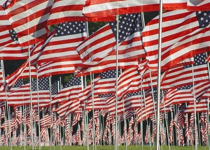 There will be 3,000 flags planted in Forest Park to honor the dead.
