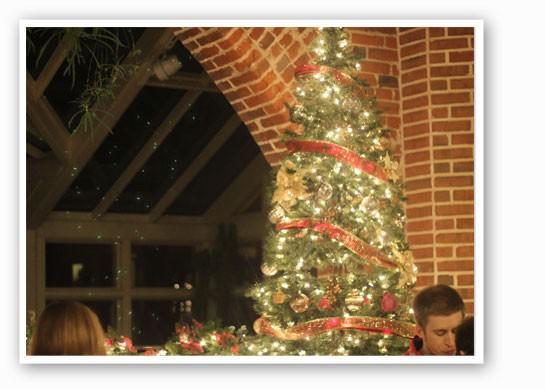 So festive! | Nancy Stiles