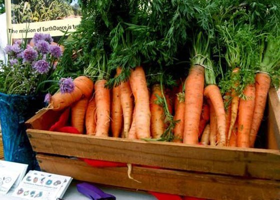 Check out the food options at St. Louis Earth Day. | Ettie Berneking