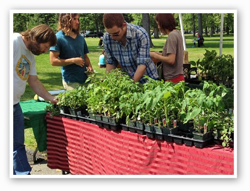 Members of the grow-your-own crowd are welcome at the farmers' market too.   Zach Garrison