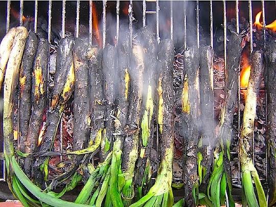 Calçots roasting over an open fire | image via