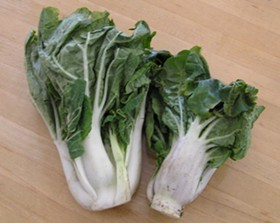 Bok choy, lookin' innocent. Don't be deceived.