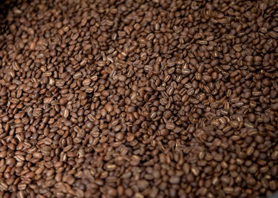 Beans at Kaldi's Coffee. | Jon Gitchoff