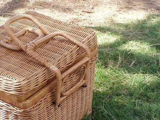 picnic092209.JPG