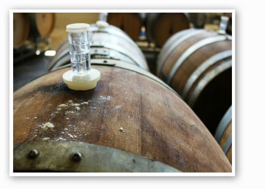 Fermenting barrels. | Pat Kohm