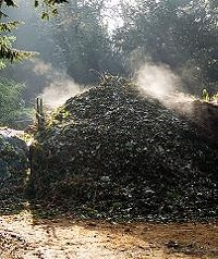A compost heap. - ANDREW DUNN, WIKIMEDIA COMMONS